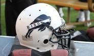 bison helmet